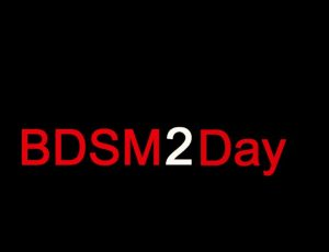 BDSM2Day groot e1524005573863 300x230 - AFFILIATES